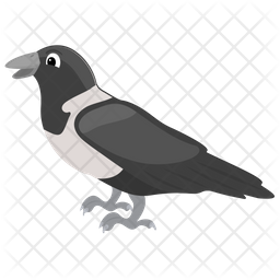 Corvus Albus Flat Icon