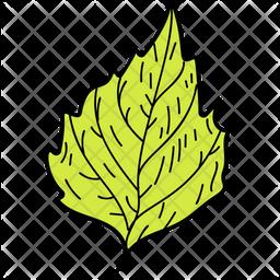 Crenate Leaf Icon