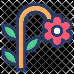 Daisy Flower Icon