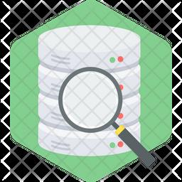 Data Search Flat Icon