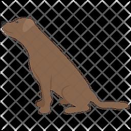 Dobermann Icon