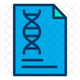 Document Colored Outline Icon