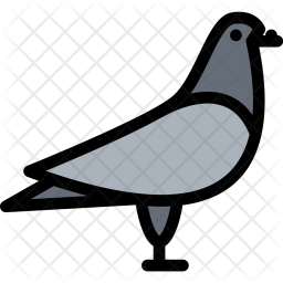 Dove, Pet, Animal, Vet, Store, Zoo Icon