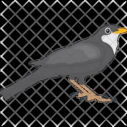 Egyptian Plover Icon