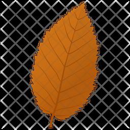 Elm Leaf Icon
