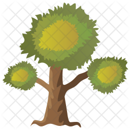 Eucalyptus Tree Icon