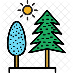 Evergreen Trees Icon