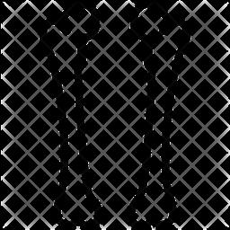Femur Icon