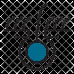 Follicle Icon