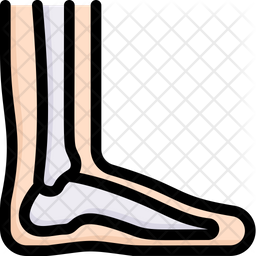 Foot Colored Outline Icon