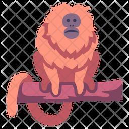 Golden Lion Tamarin Icon
