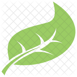 Hackberry Leaf Icon