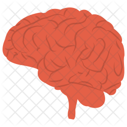 Human Brain Icon Of Flat Style Available In Svg Png Eps Ai Icon Fonts