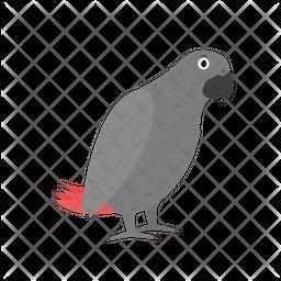 Jaco parrot Icon