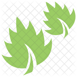 Leaf Grass Icon