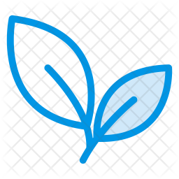 Leaves Colored Outline Icon