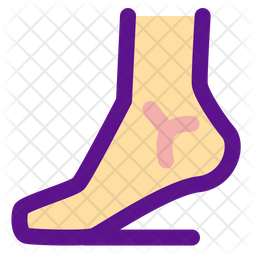 Leg Colored Outline Icon