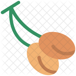 Litchi Flat Icon