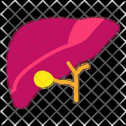 Liver Flat Icon