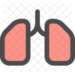 Lung Colored Outline Icon