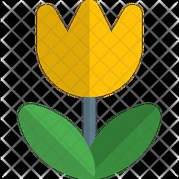 Macro Gradient Icon