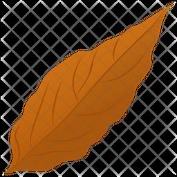 Magnolia Leaf Icon