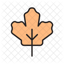 Maple leaf Colored Outline Icon