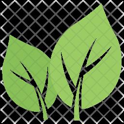 Milkweed Leaf Icon