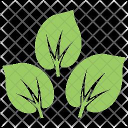 Milkweed Leaves Icon
