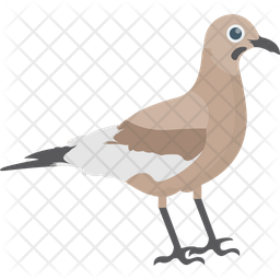 Mimidae Icon