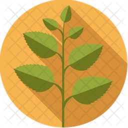 Peppermint Icon