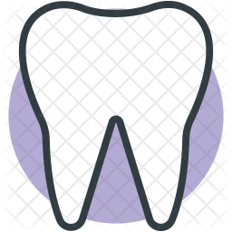 Molar Icon