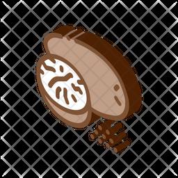 Nutmeg Nut Icon
