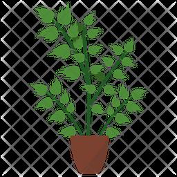 Oregano Potted Plant Icon
