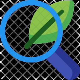 Organic, Search Flat Icon