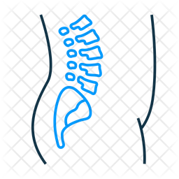 Orthopaedics Icon