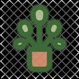Pilea Plants Icon