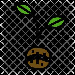 Planting Coffee Icon
