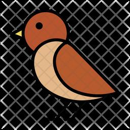 Plover Icon