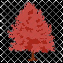 Quercus Palustris Icon