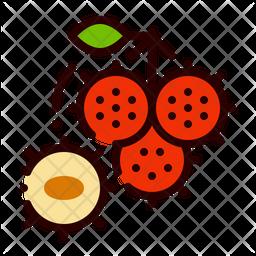 Rambutan Fruit Icon