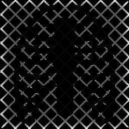 Ribs Cage Icon