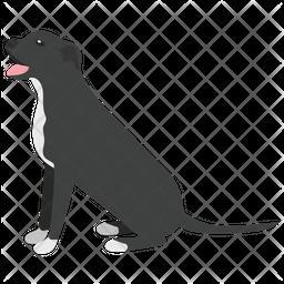 Rottweiler Icon