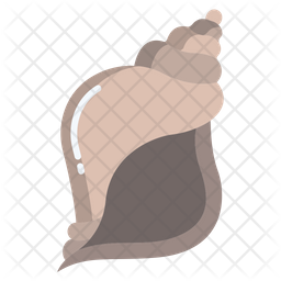 Sea Shell Flat Icon