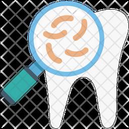 Search Bacteria Icon