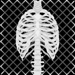 Skeleton Ribs Icon