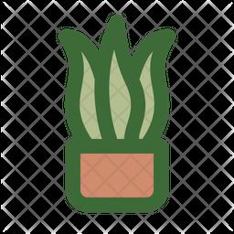 Snake Plant Icon