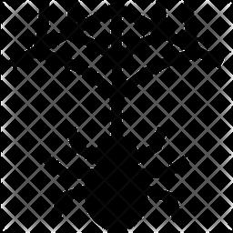 Spider Cobweb Icon