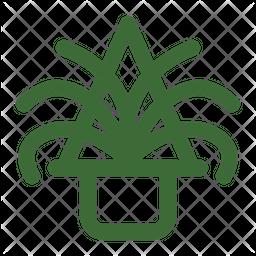 Spider Plant Icon