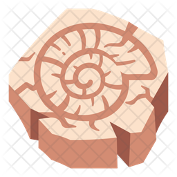Spiral Shell Icon